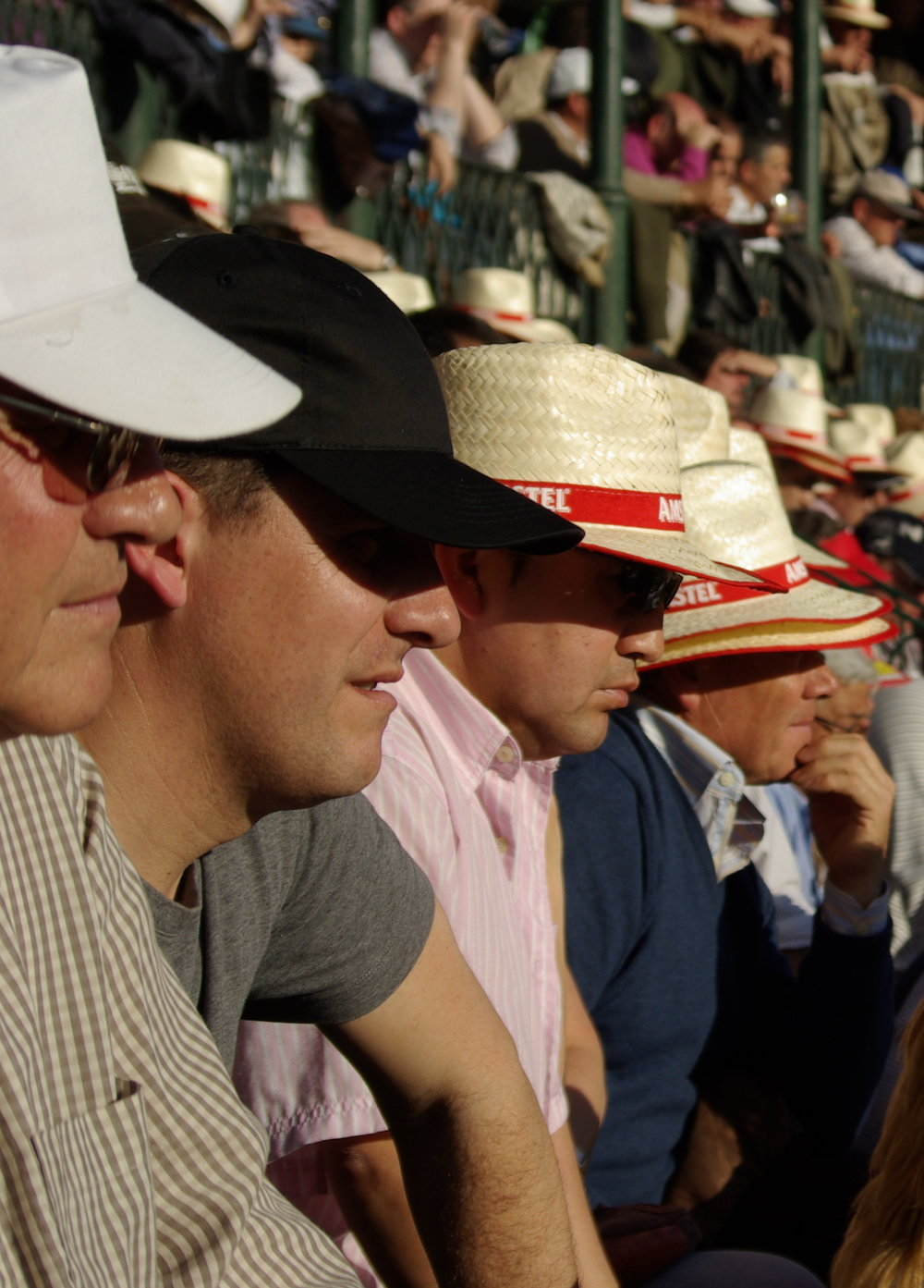 bullfight spectators.jpeg
