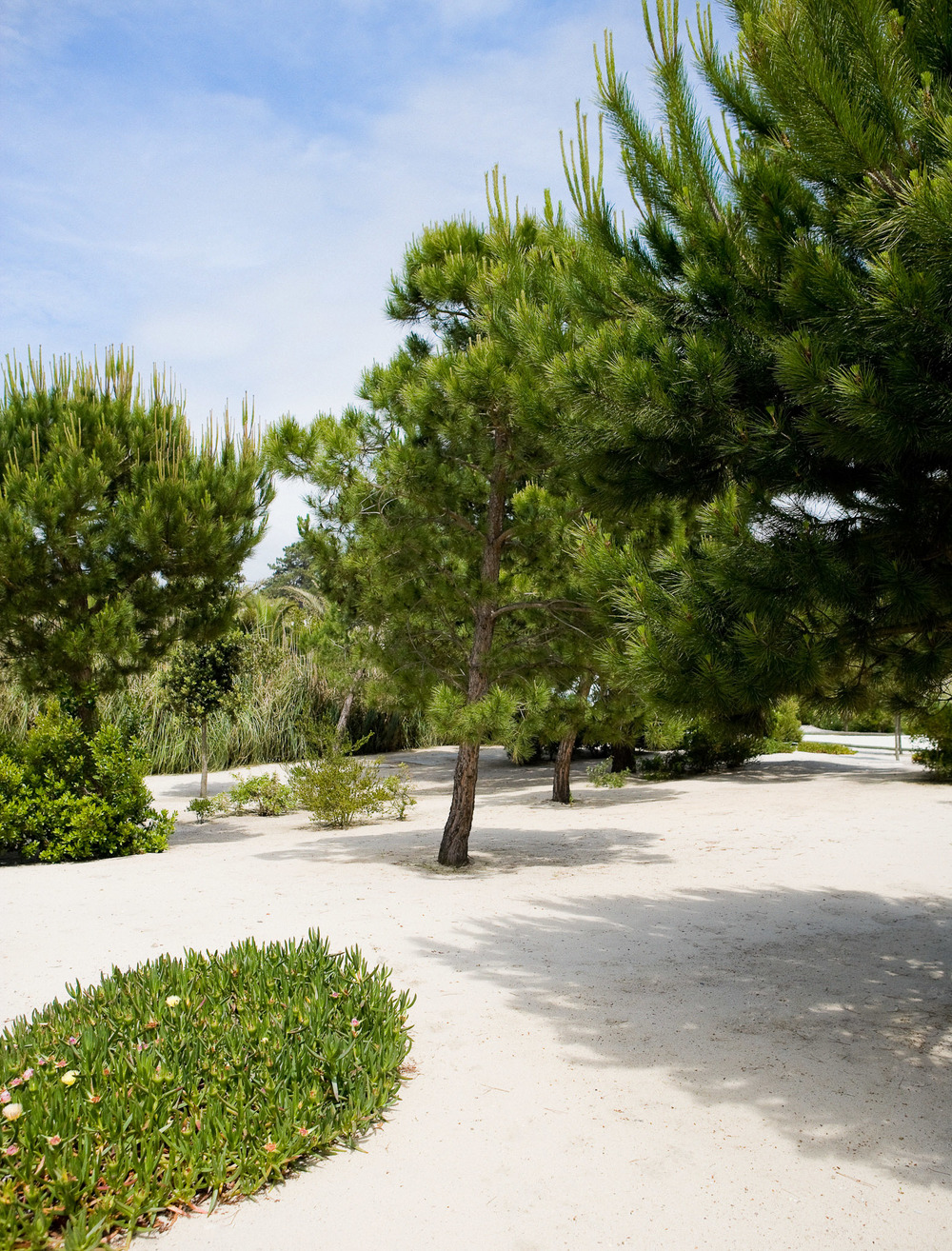 jardin Louis Benech