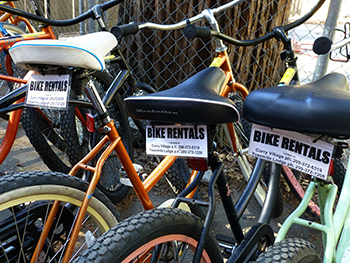Rental_Bikes_2014.jpg