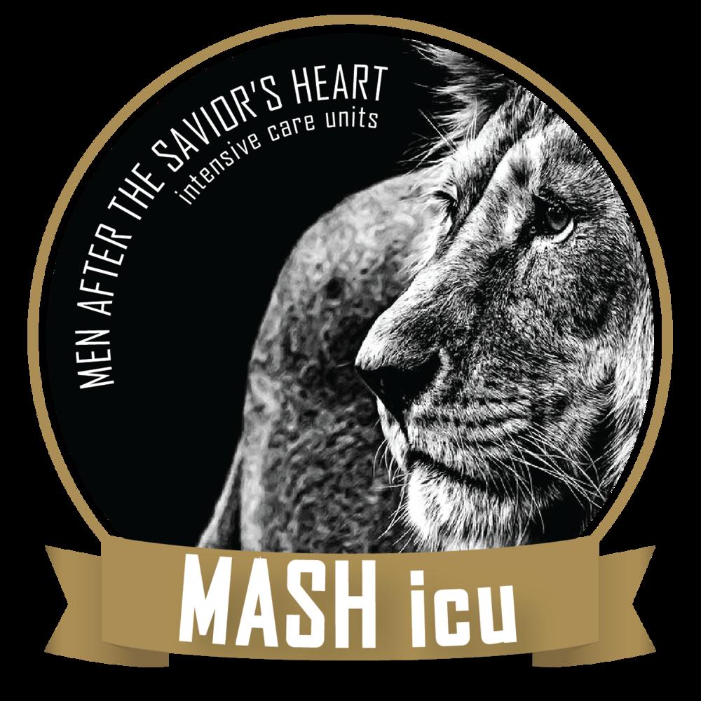 MASHicu