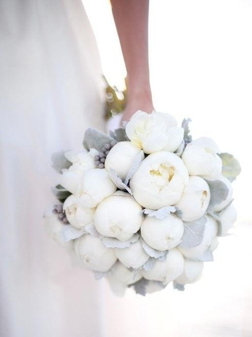 Brides, Flora + Fauna