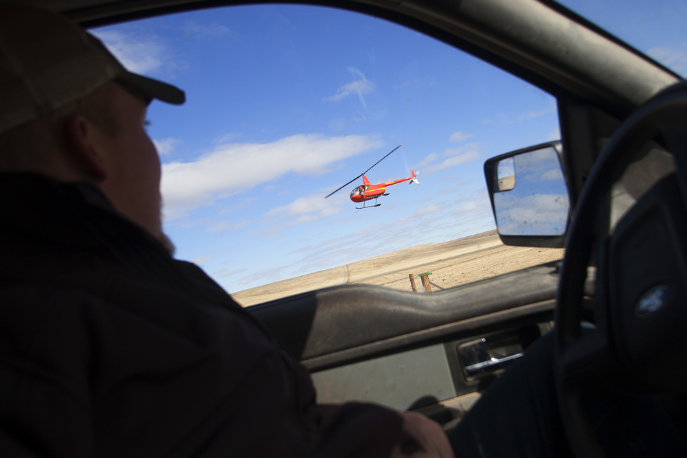 777 Bison Ranch Foreman, Justin Selke, watches as a helicopter scans the prairie for mule deer.