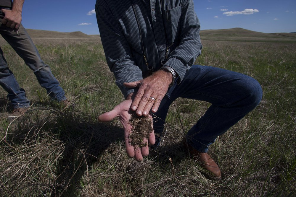 Kirk Gadzia, of Resource Management Services, displays a healthy mixture of soil on the 777 Bison Ranch, due to the Regenerative Grazing technique.