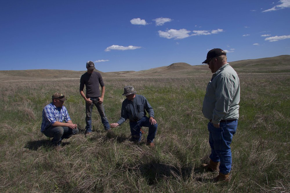 Kirk Gadzia, of Resource Management Services, shows the team a healthy mixture of soil on the 777 Bison Ranch.