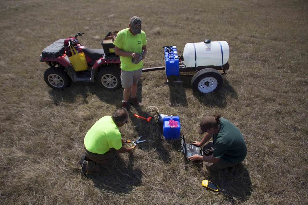 Steven Apfelbaum, left, of Applied Ecological Services, performs a biomass tes which will be used to measure re-growth, as Jason Behrends, and Ry Thompson prepare a water saturation test at the 777 Bison Ranch, in Hermosa, SD.