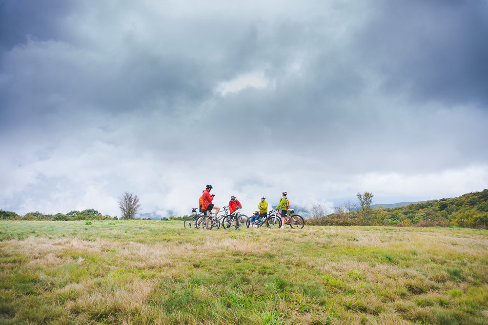 Whigg's Meadow-2.jpg