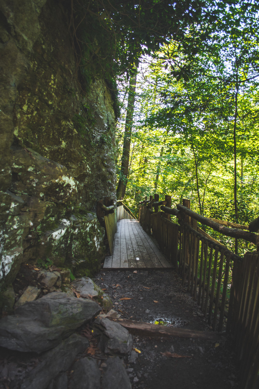PA Waterfall-1.jpg