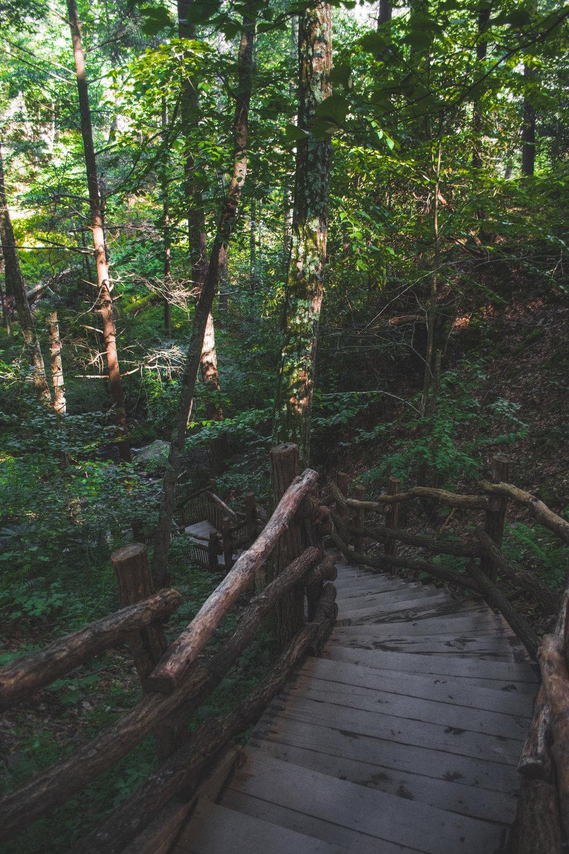 PA Waterfall-5.jpg