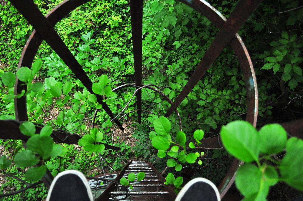 Ladderdown.jpg
