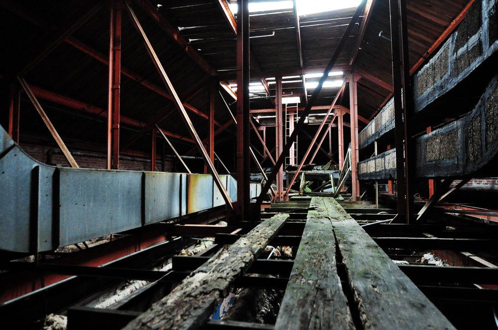 rafters3.jpg