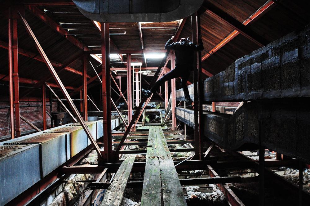 rafters4.jpg