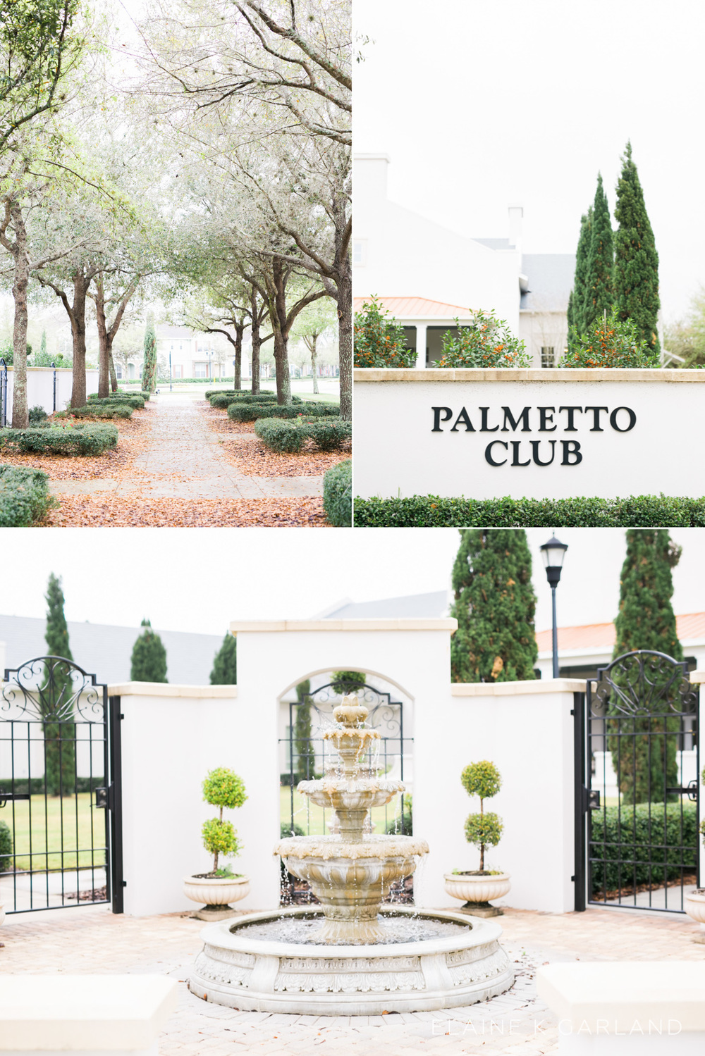 the-palmetto-club-at-fishhawk-ranch-wedding-1.jpg