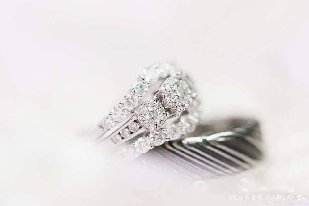 lilac-silver-sunken-gardens-tampa-wedding-3.jpg