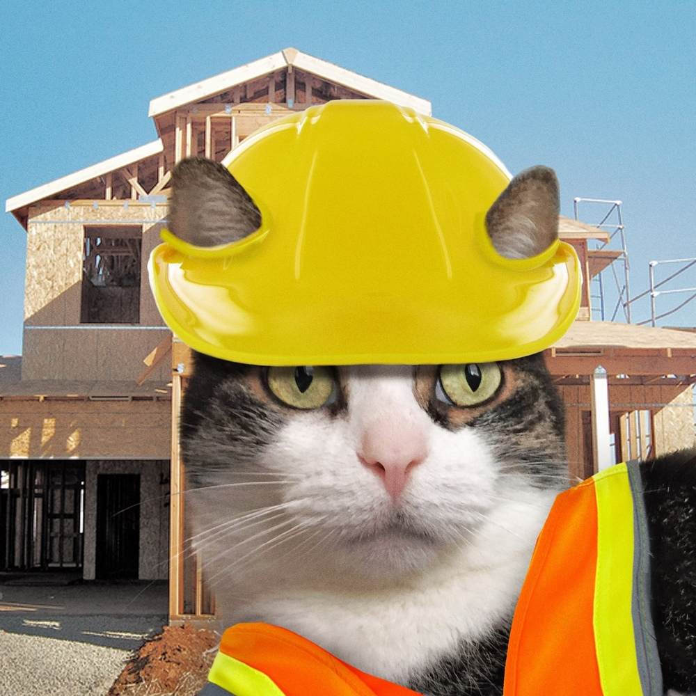 Konstruction Katz, 2015