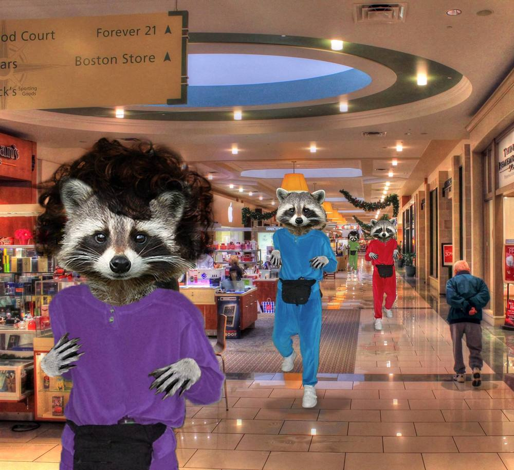 Mallwalking Raccoons, 2015