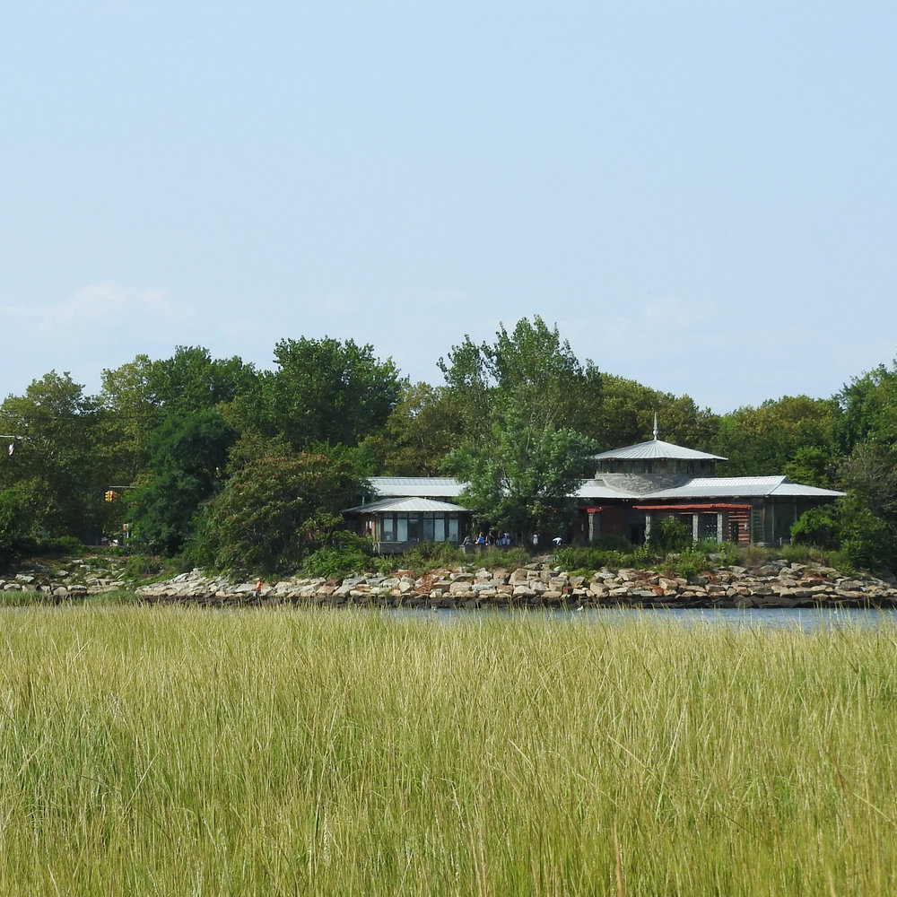 A view of the  nature center