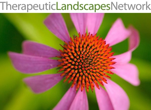Therapeutic Landscape Network