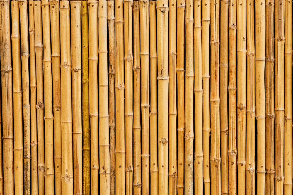Bamboo is not a great idea for a remodel in College Station