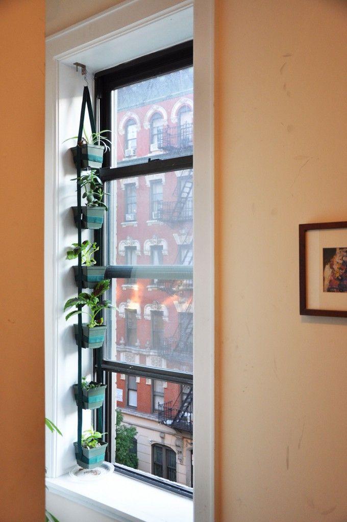 Verticle window herb garden