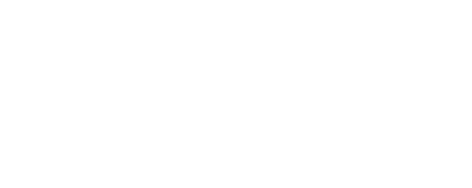 Friends of Noyes Park