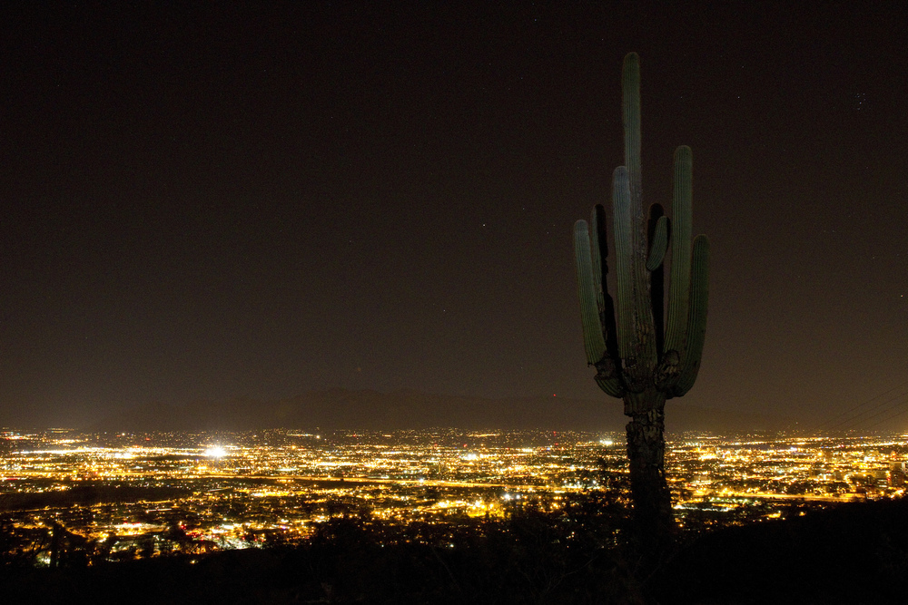 Tucson and the Santa Catalina Mountains from Tumamoc Hill. Photo: Aengus Anderson