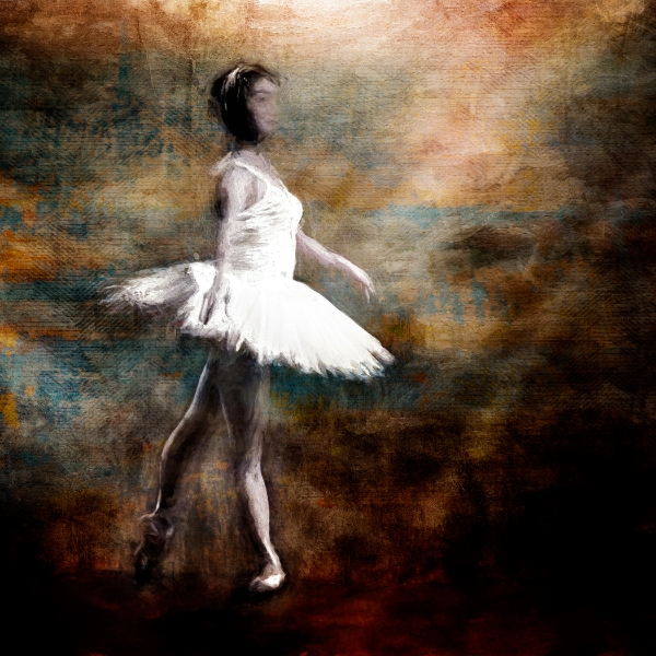 The Ballerina Life by Karen Waters