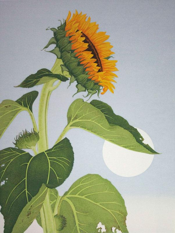 Sunflower 13x17 silkscreen print.jpg