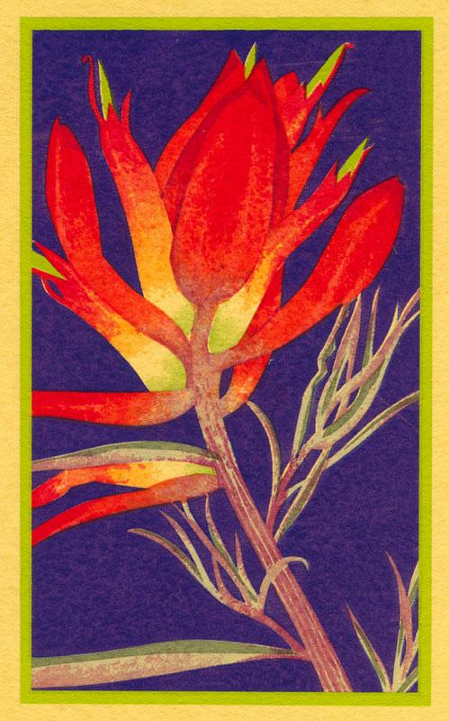 Indian Paint Brush 4x6 silkscreen print.jpg