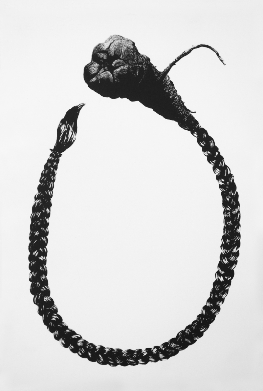 Peyote Braid, 2009.jpg