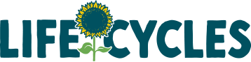 Lifecycles logo.png