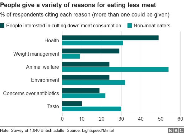 reasons for becoming vegan