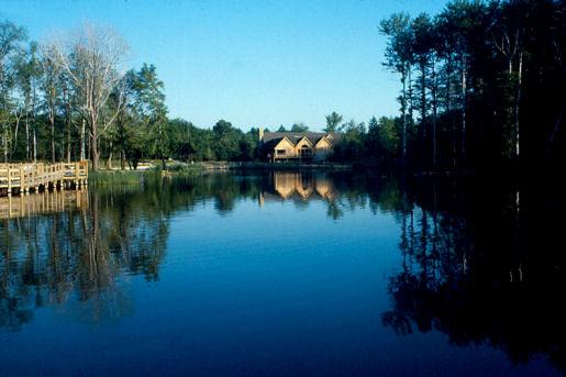 Sanctuary Marsh 1.jpg