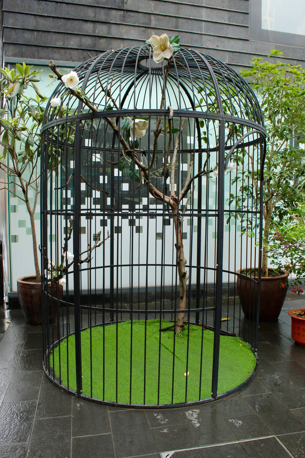 A human sized bird cage located at the entrance to the Old town in Zhujiajiao.