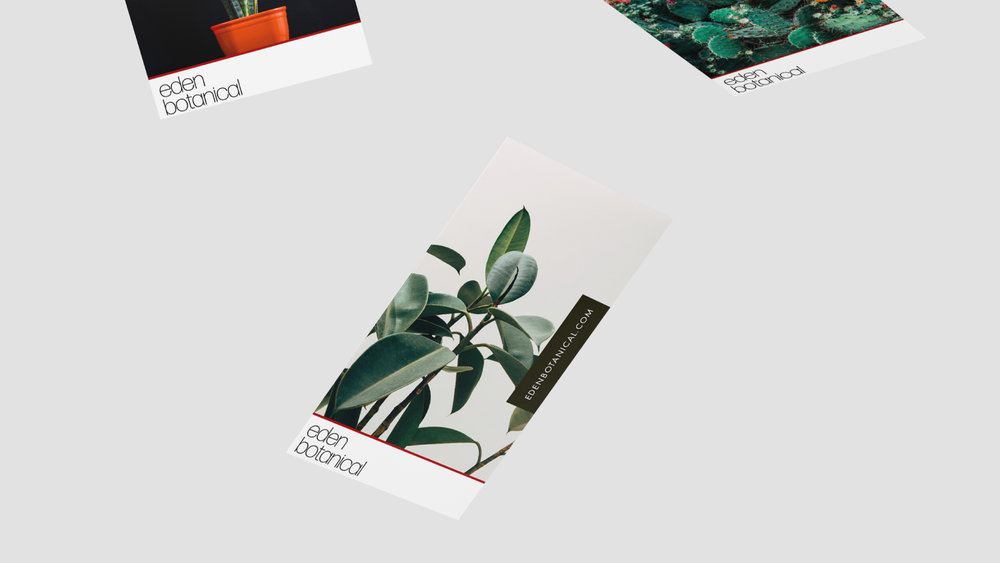 Eden-Cards2.jpg