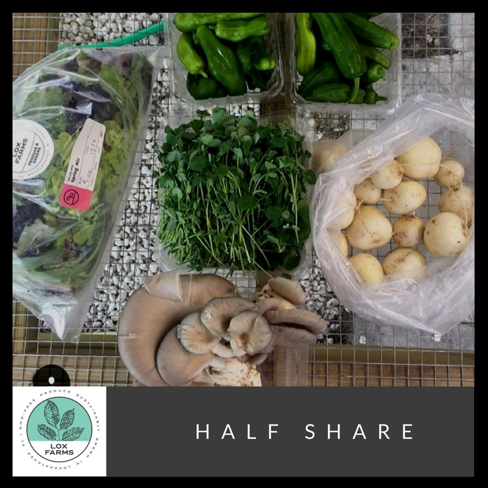The Half share will typically contains 5-6 items of vegetables and greens. It  is great for 1 to 2 people but really depends on how much produce and meals you eat and cook weekly.      * The picture above is an example of the amount of items can be in a half share. The produce will vary throughout the season.