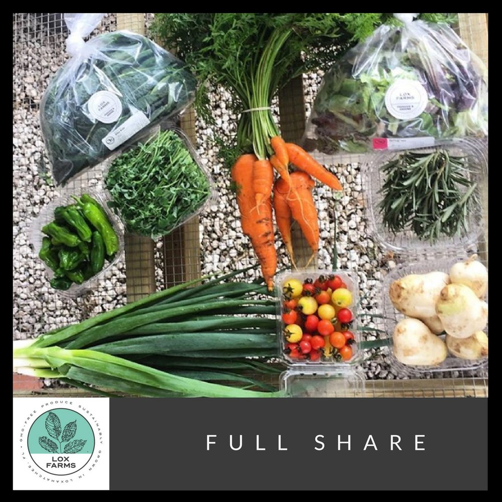 The Full Share will typically contains 7-8 items vegetables and greens. This share is great for families 3-5 people but really depends on how much produce you eat weekly.     * The picture above is an example of the amount of items can be in a half share. The produce will vary throughout the season.