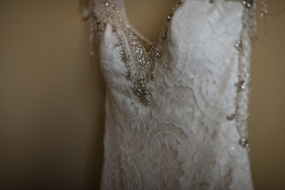 Dani had the most exquisite wedding dress, it was designed with her in mind, I'm certain of it!