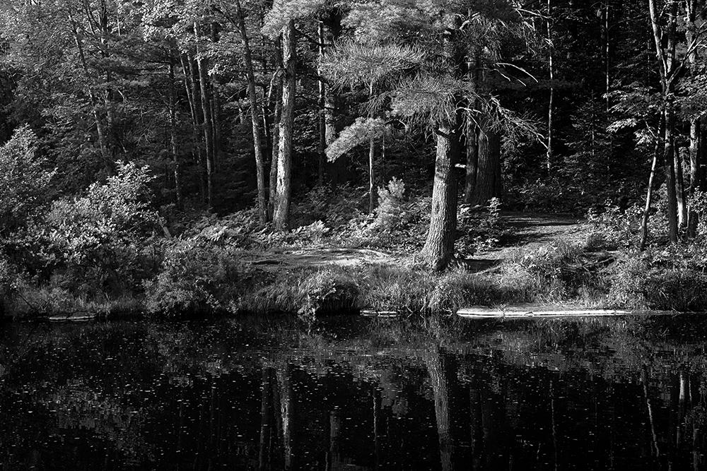 Dead River Pond