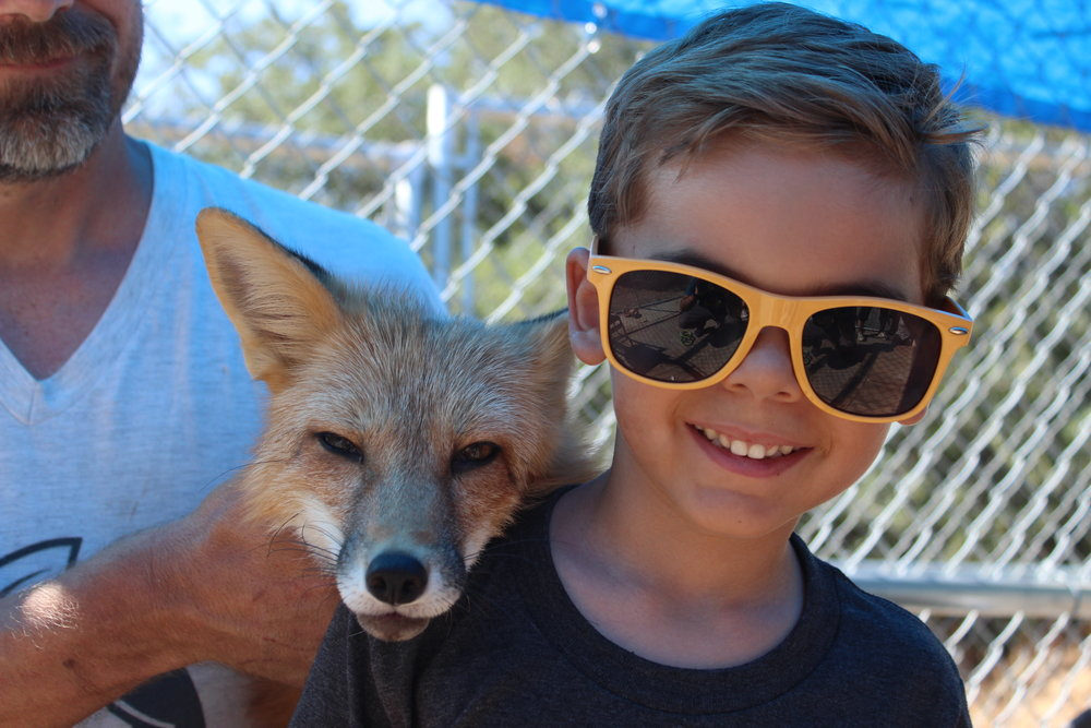 Viktor with his Foxy Friend, Camden.Photo courtesy of Daniel Brown. -