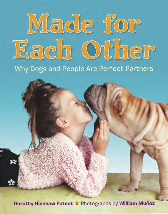JABCECC Ambassador fox featured in this newly released book for children!!http://rhcbooks.com/books/253124/made-for-each-other:-why-dogs-and-people-are-perfect-partners/ -