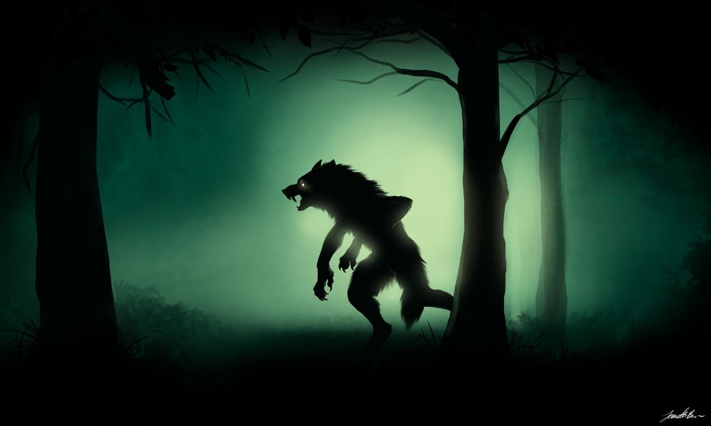 Midnight Stalk