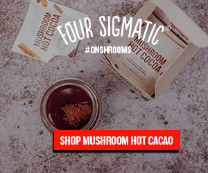 hot_cacao_300x250.jpg