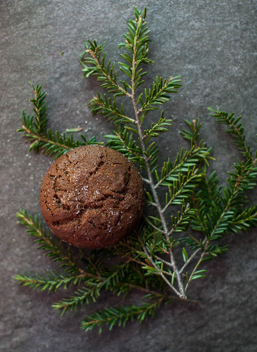 MegaBugPhotography_ChristmasCookies-6.jpg