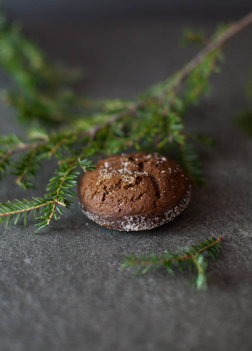 MegaBugPhotography_ChristmasCookies-1.jpg