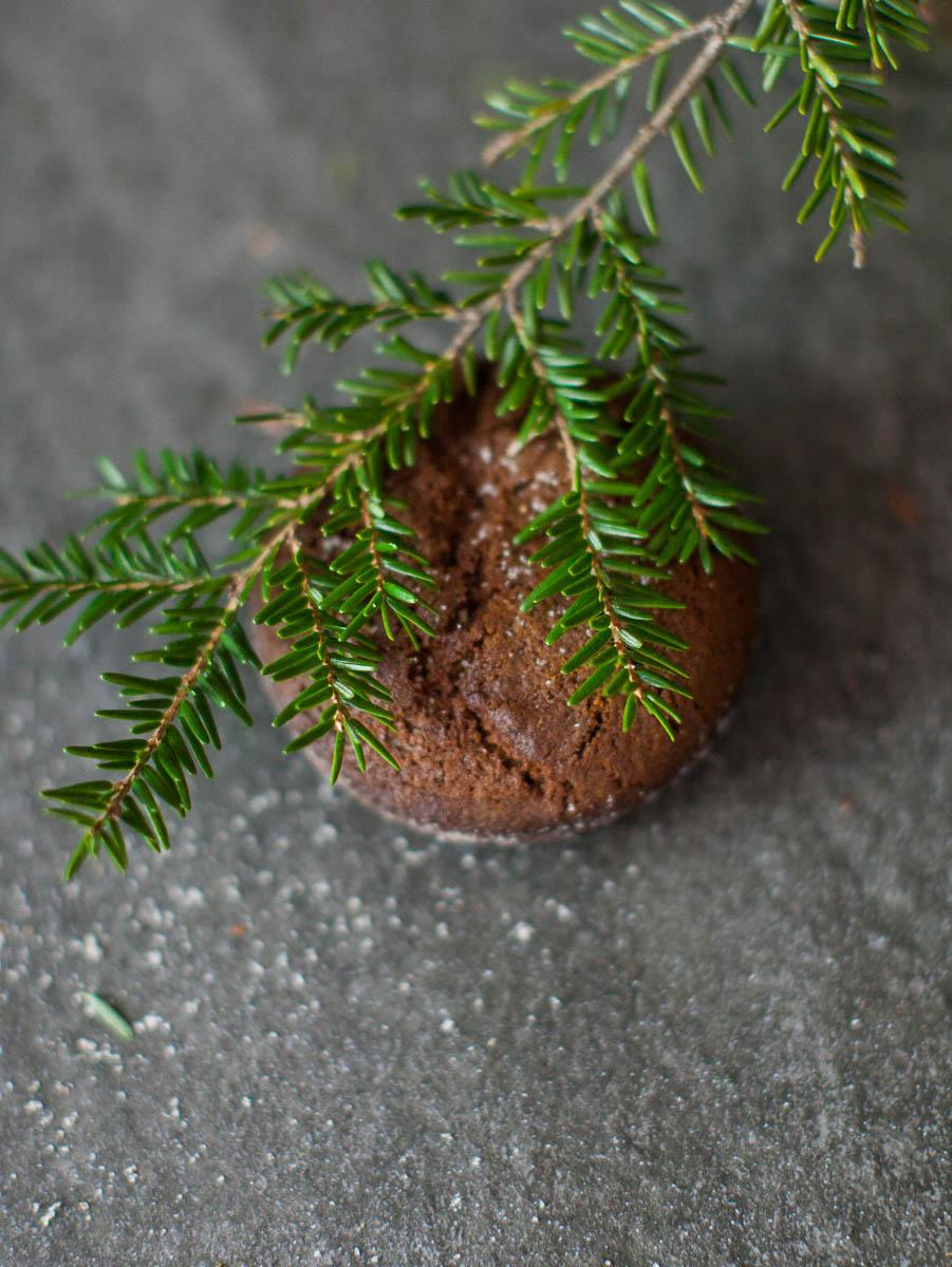 MegaBugPhotography_ChristmasCookies-14.jpg