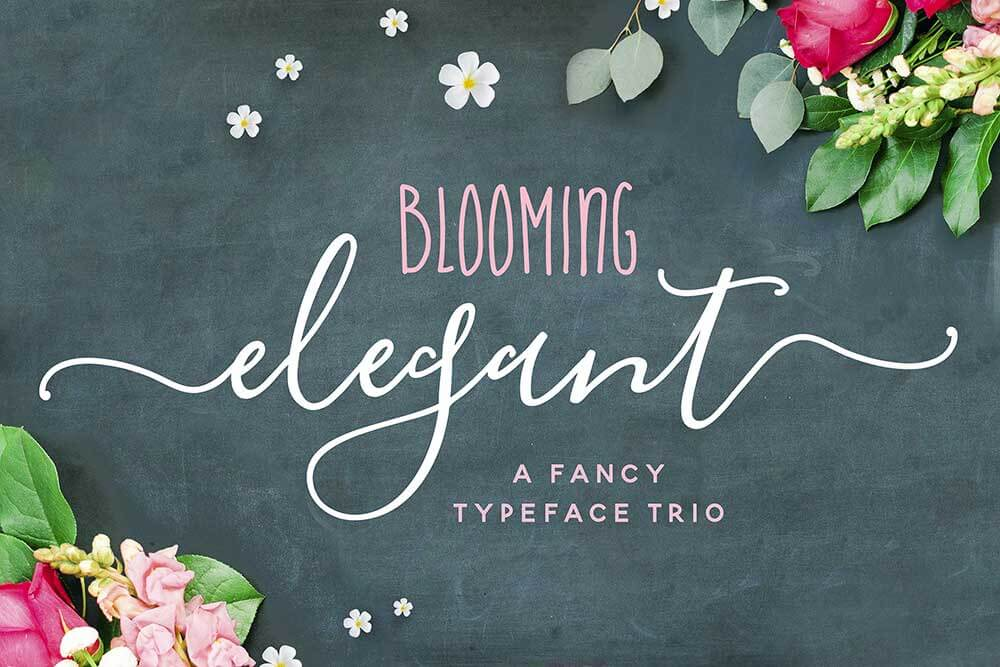 Blooming Elegant font trio by Nicky Laatz