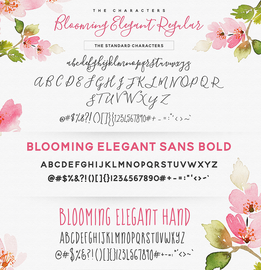 Blooming Elegant font example alphabet