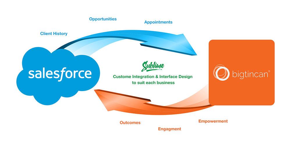 SalesForce-Bigtincan.jpg