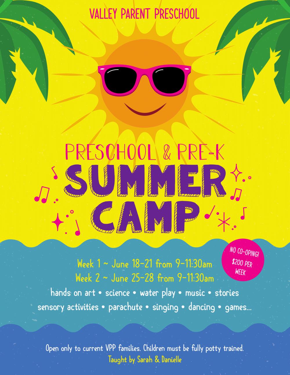 VPP Summer Camp 2018-1.png