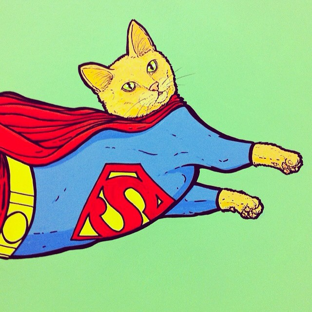#tbt superman cat from The Good, The Bad, & The Fuzzy back in February.